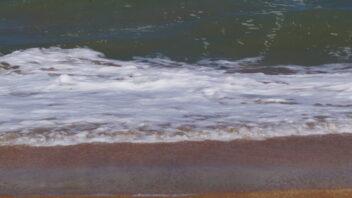 Море поселок Курортное